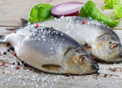 соленая рыба-2